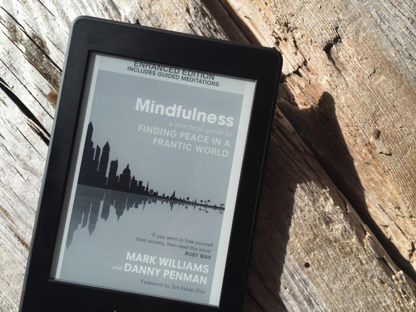 MindfulnessFranticWorld